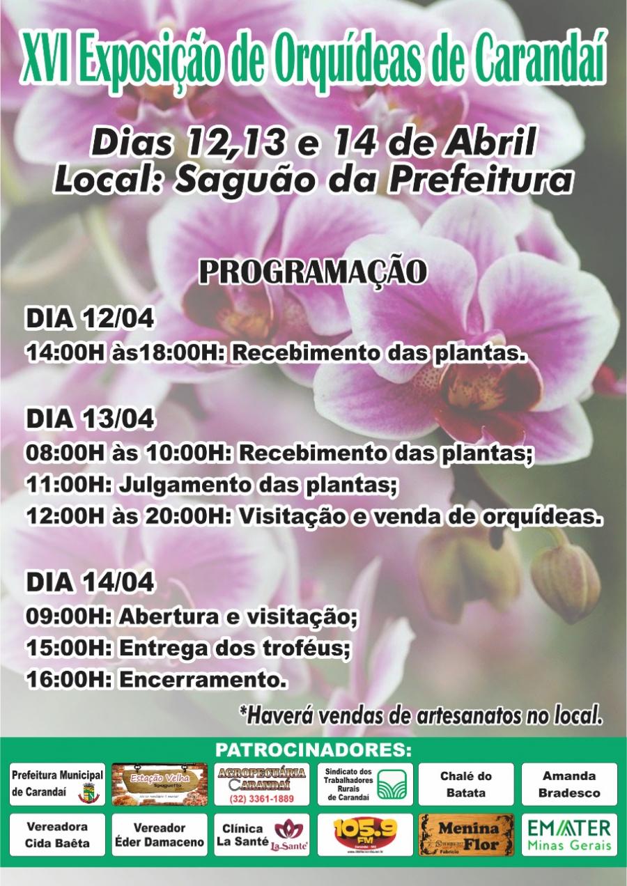 XVI Exposição de Orquídeas de Carandaí